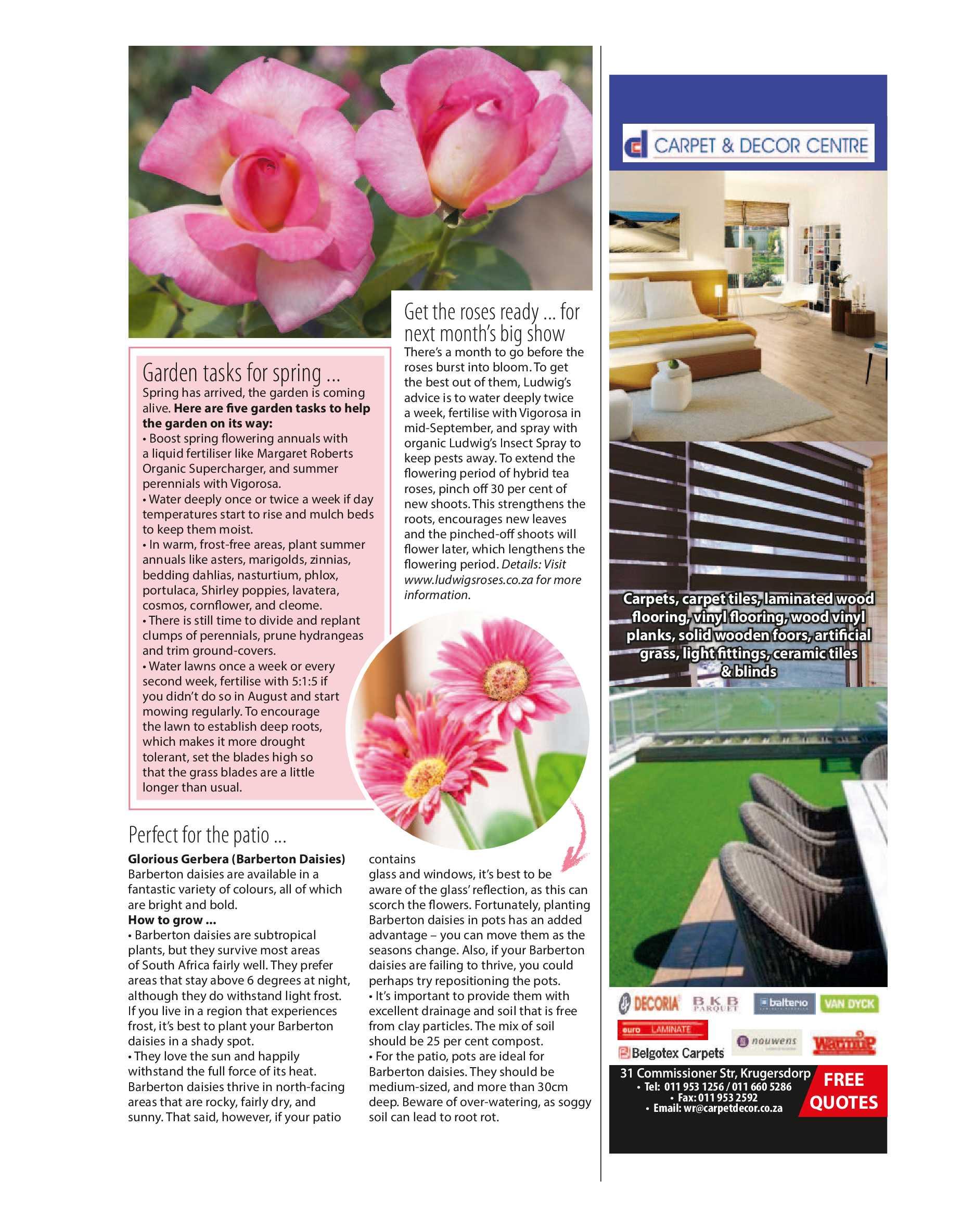 get-joburg-west-september-2018-epapers-page-27